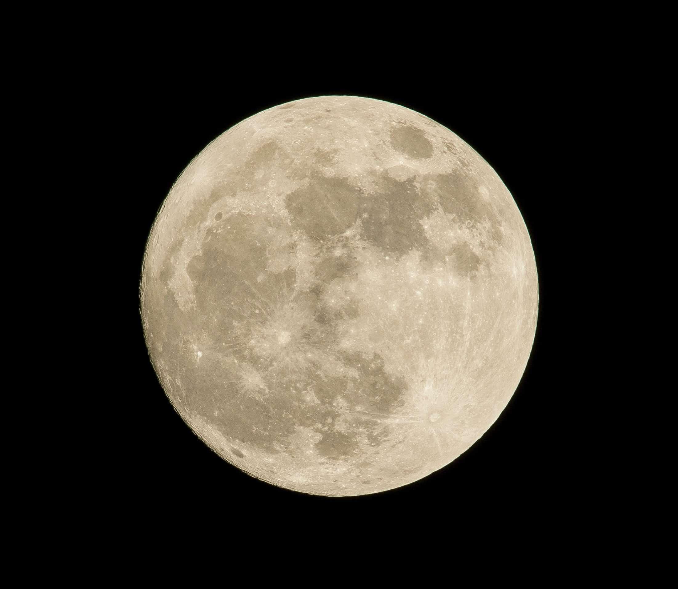 Jardinage avec la lune