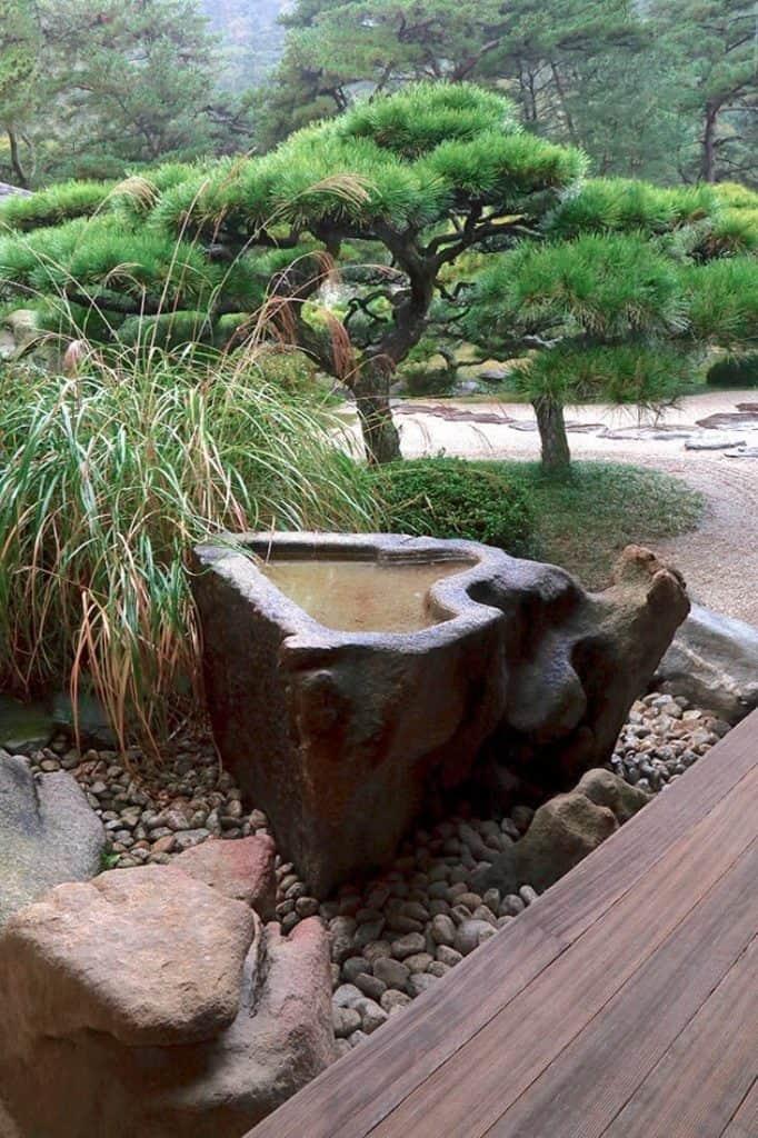 Un bassin d'eau dans un jardin