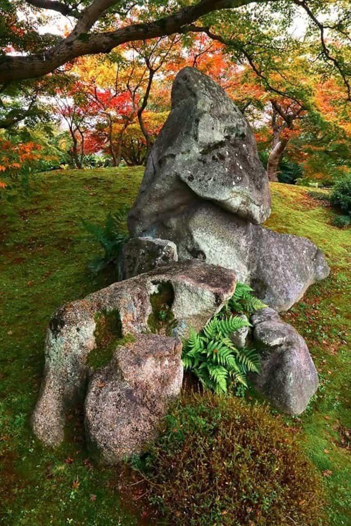 Un grand rocher dans un jardin