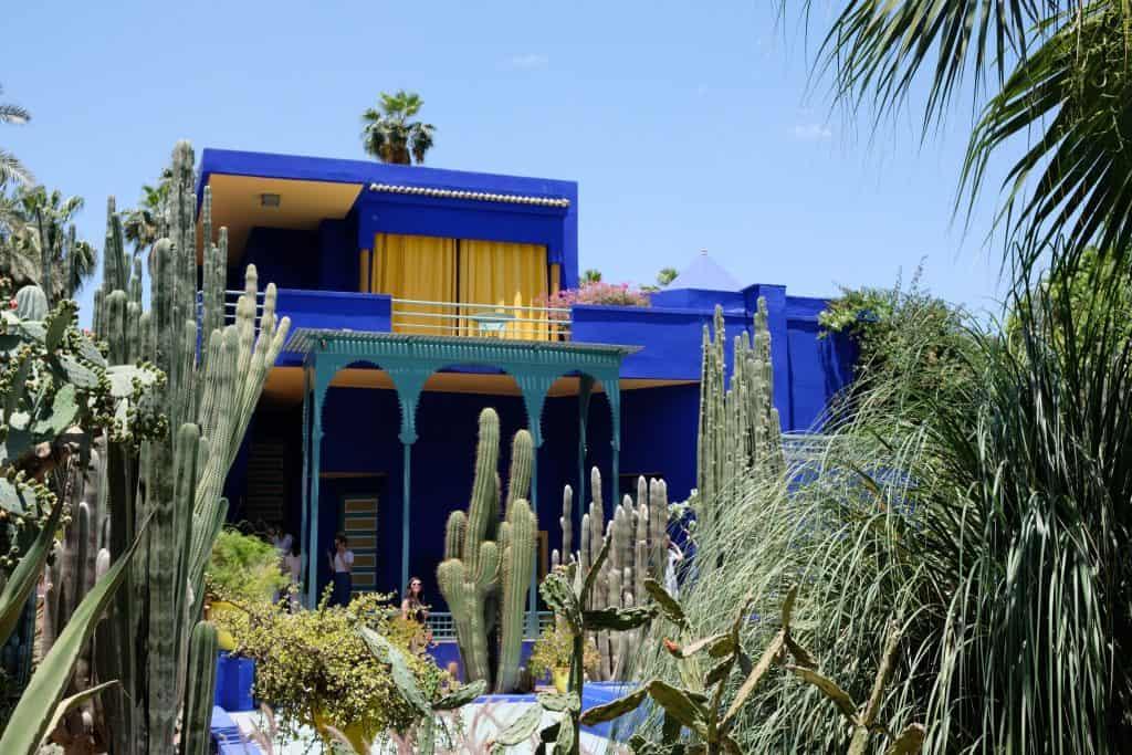 des cactus en extérieur