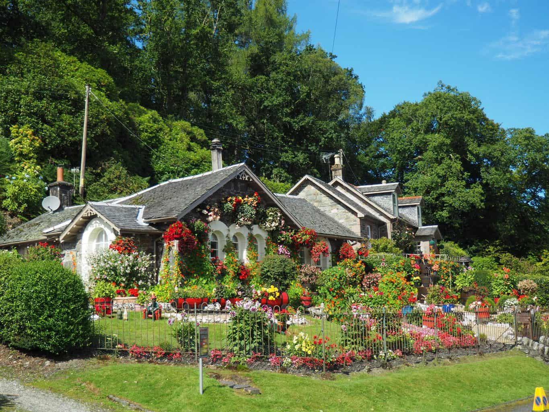 maison avec jardin fleuri