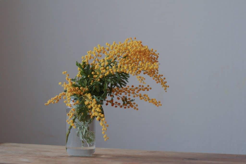 DIY déco fleurs séchées: comment faire sécher des fleurs et quoi en faire?