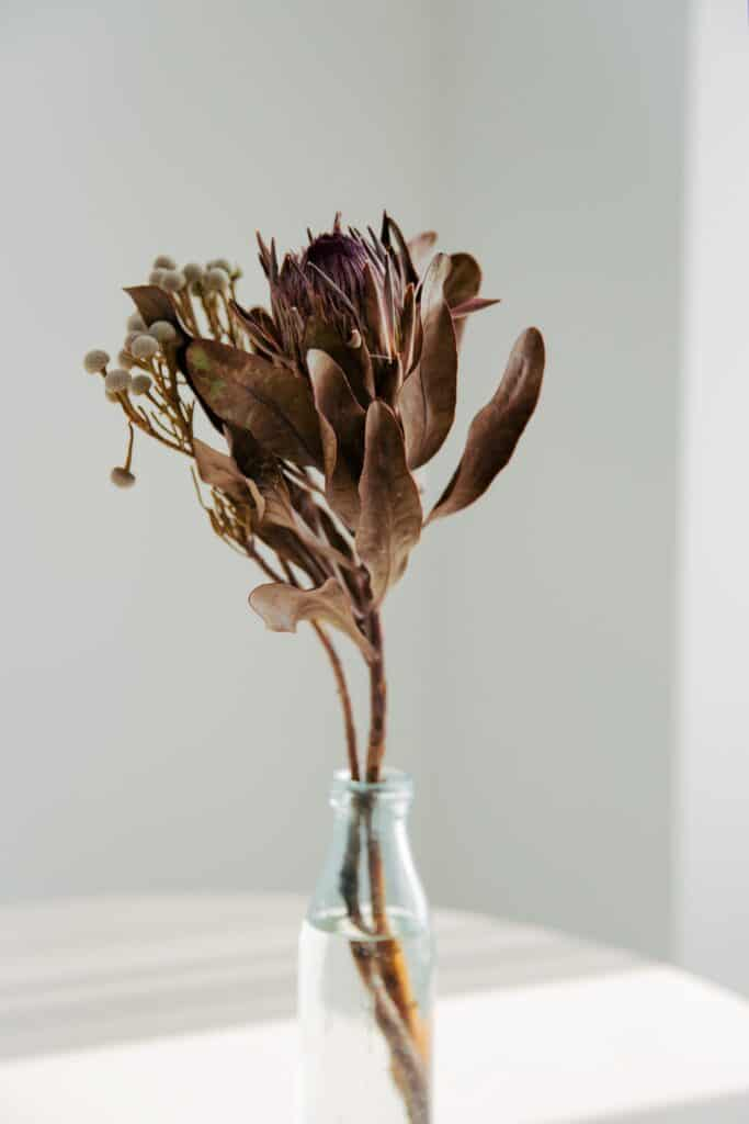 vase avec bouquet fleurs