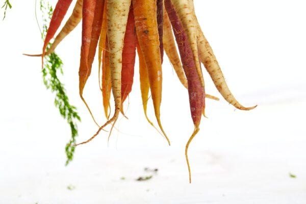 Quel est le poids d'une carotte ?